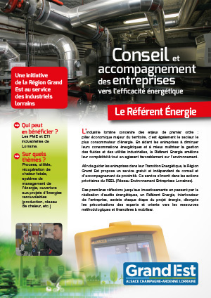 Conseil et accompagnement des entreprises vers l'efficacité énergétique : le référent énergie