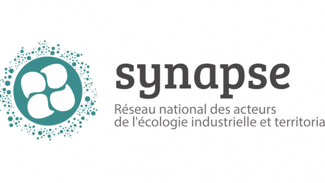 Synapse