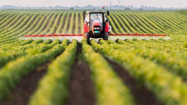 Agriculture dans le Grand Est