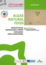 Algae Natural Food : Production de microalgues à partir d'effluents agro-alimentaires